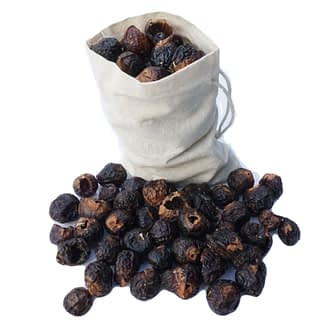 Soap nuts in muslin bag